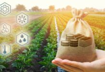 Agribusiness In Ghana, Job Opportunities, Salary and More